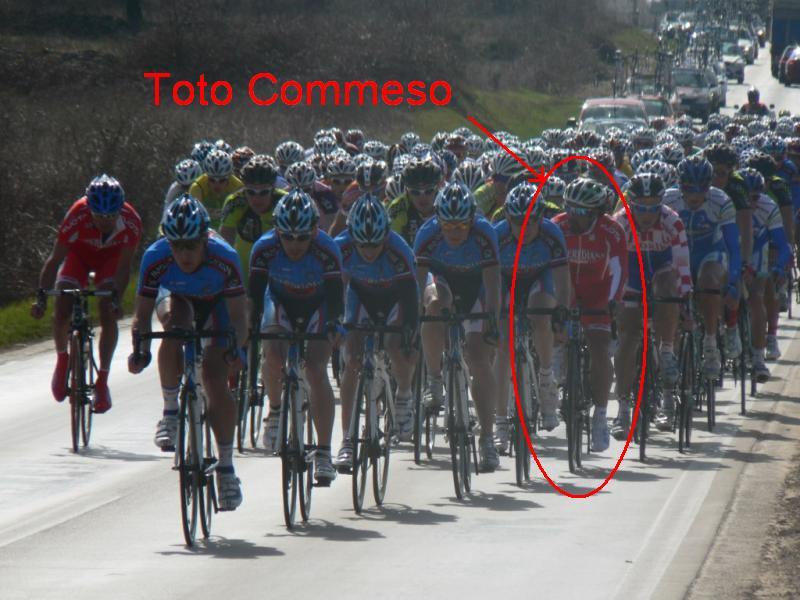 toto-commeso1